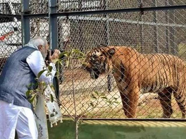 picture of pm modi got viral on twitter