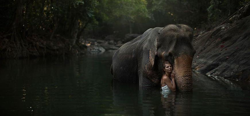 photoshoot with animal