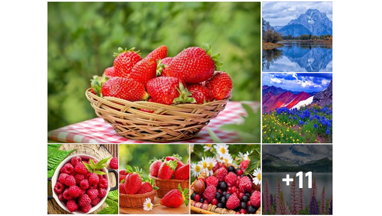 beautiful pictures of nature looks Great Atmosphere