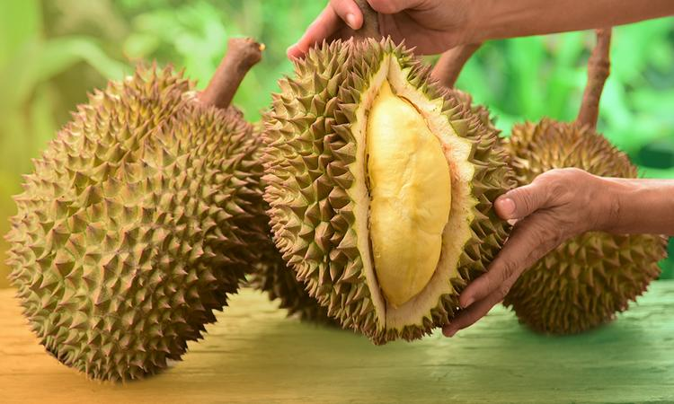 world most smelliest fruit Durian Fruit