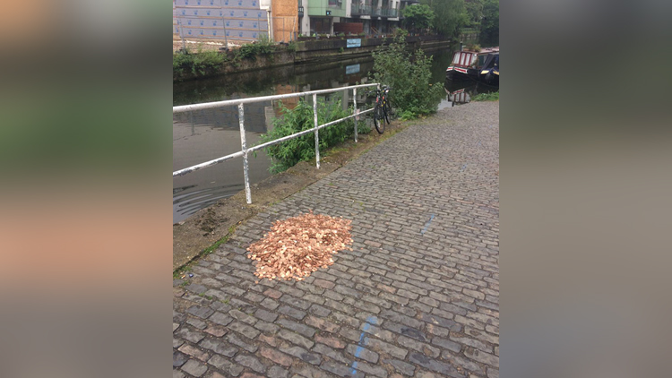 Artist Leaves 15000 Coins On Ground In London To See How People react
