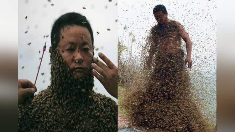 Chinese man covered with 460000 bees for honey stunt