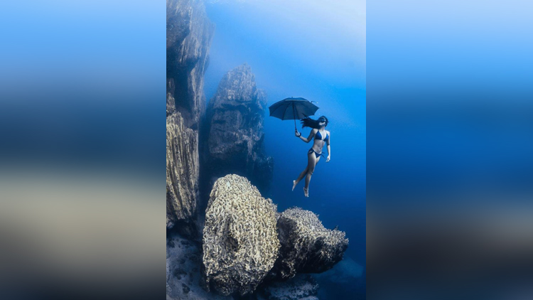 2017 Underwater Photo Competitions