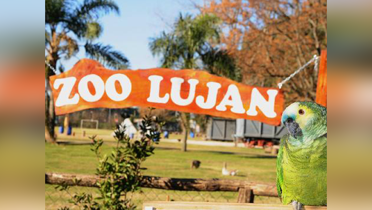 worlds most dangerous zoo lujan zoo in argentina