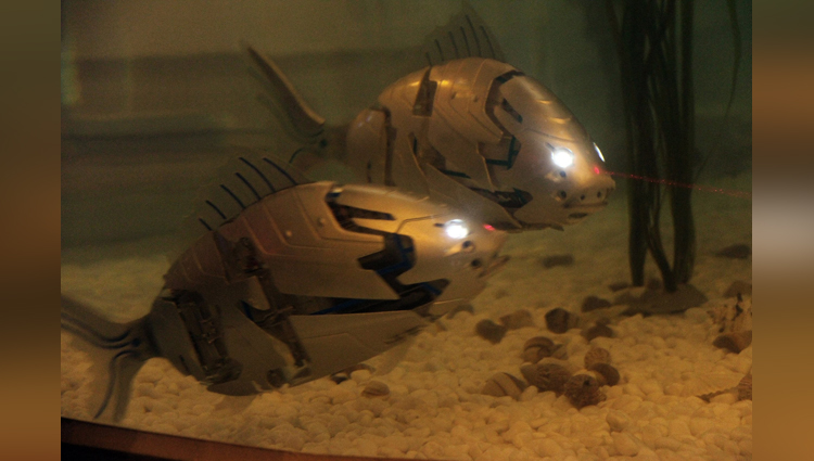 South Korea made the most string robotic fish