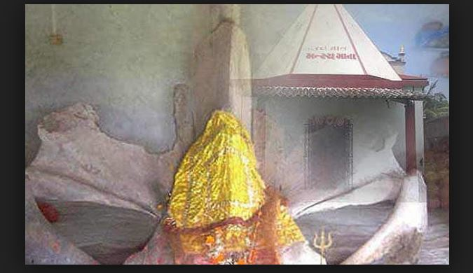 Matsya Mandir Valsad Gujarat  A temple where bones of whale fish is worshipped