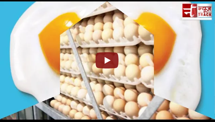 Egg prices hit a high, now as costly as chicken
