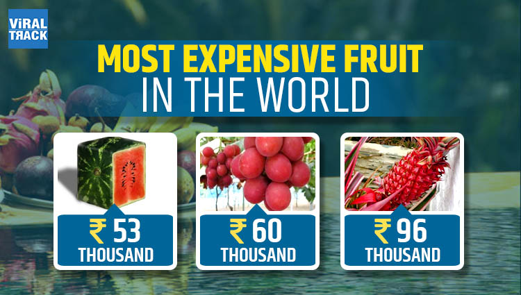 The Most Expensive Fruits in the World