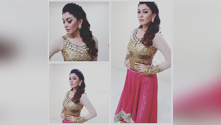 Hansika Motwani share her hot and amazing photos