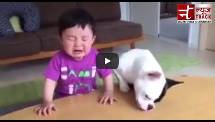 Bacche Ka Biscuit kha gaya doggy Funny videos Viral videos