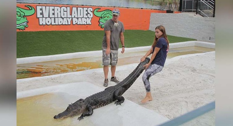 gabby scampone become women alligator wrestler
