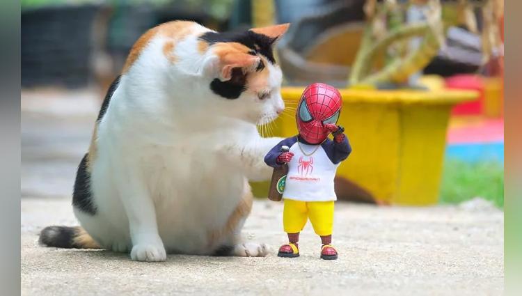 Artist Puts Baby Spiderman And Cats In The Funniest Scenarios