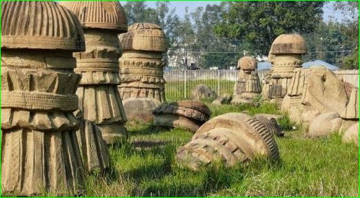 interesting facts about nagaland