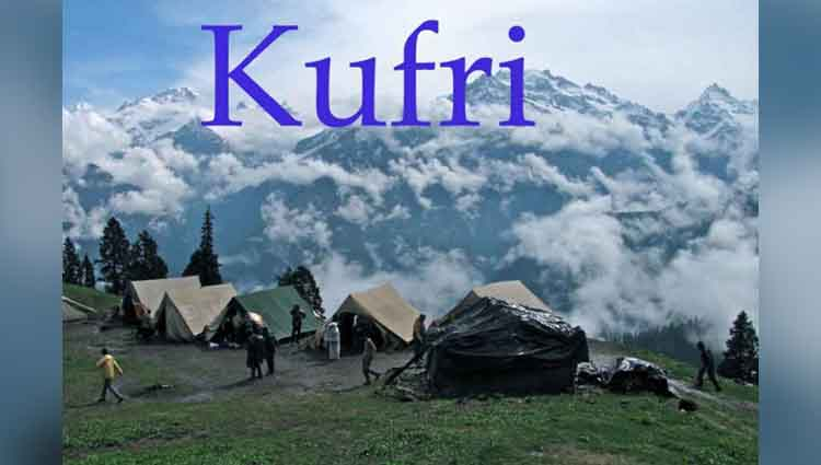 Flora and Fauna of Kufri