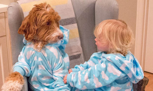 Reagan dog upload his pictures with his human best friend