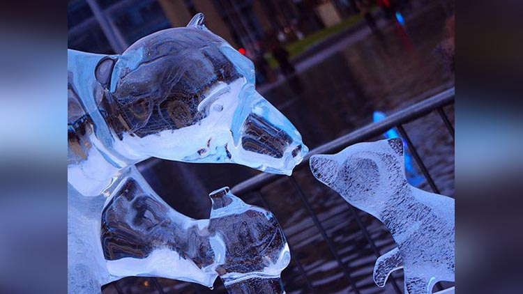 amazing pictures of ice sculptures