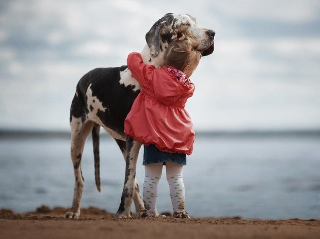 viral pictures of Little Kids and Their Big Dogs