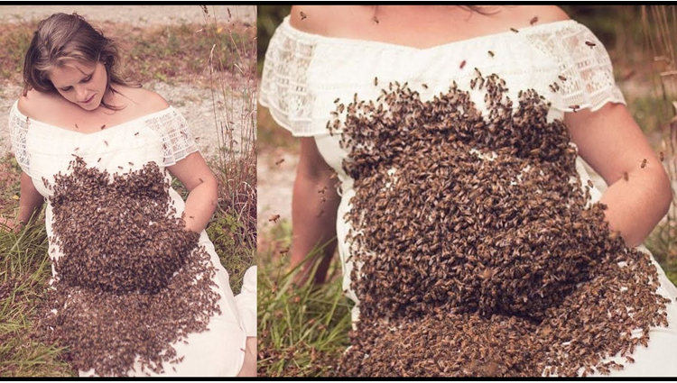 Pregnant Ohio mom poses for shoot with 20,000 bees