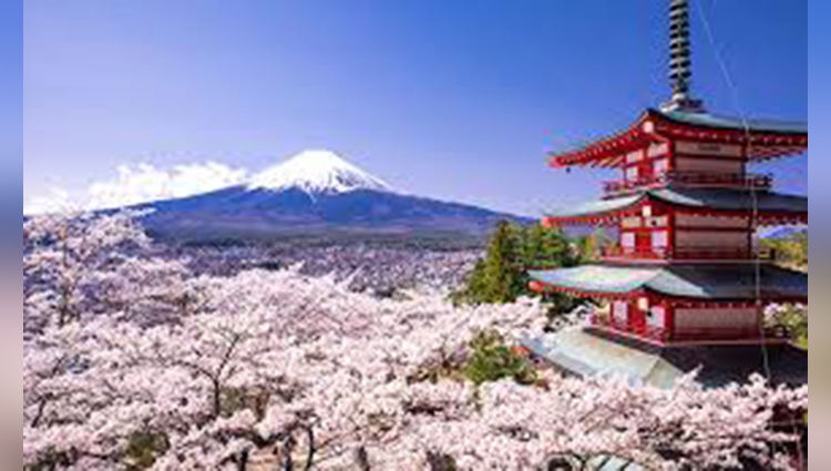 Interesting and Fun Facts About Japan