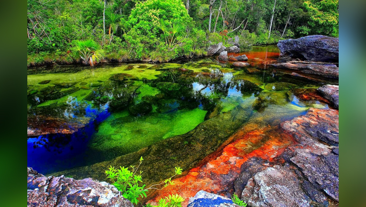 color changing river in colombia