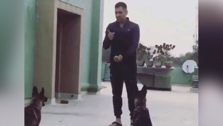 dhoni training his dogs